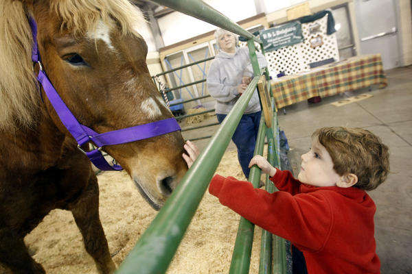 Brody Hill, 4, says hello to Dixie, a Belgian horse owned by Laura Bladecki, in background, Friday at Ag Days at the St. Joseph County 4-H Fairgrounds in South Bend. The event runs through Sunday. (South Bend Tribune/GREG SWIERZ)