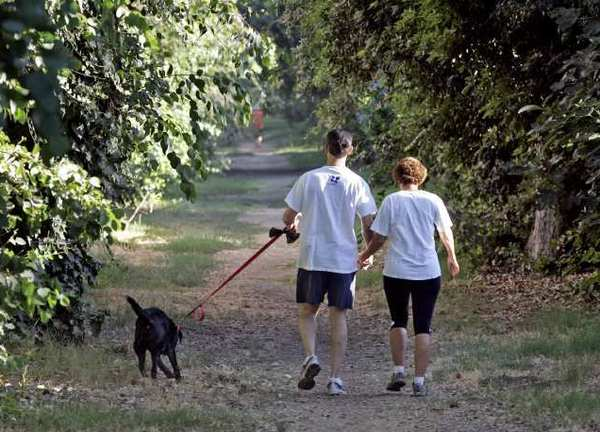 ARCHIVE PHOTO: A couple walk hand in hand with their dog on the horse trail north of Foothill Boulevard, east of St. Bede the Venerable Church early in the morning on Thursday, August 19, 2010. The trail leads to the northern parts of La Canada Flintridge.