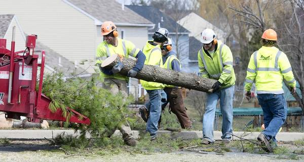 Lower Macungie Township residents objected when PPL crews removed trees on April 3, but the utility said the trimming was needed to protect power lines.