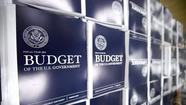 The Obama budget and the appearance of reform