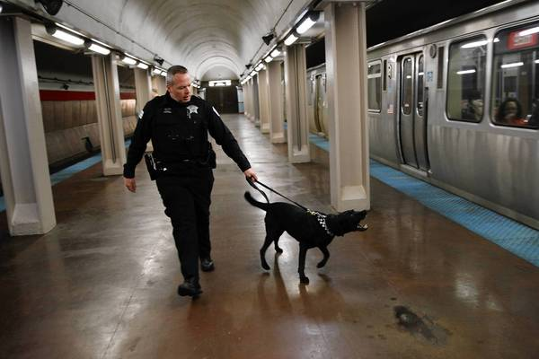 After the Boston attack, Chicago Officer Michael Walter and his dog check CTA Red Line trains at the Jackson stop.