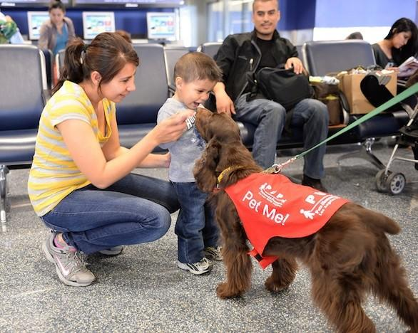 PUPs at Los Angeles International Airport