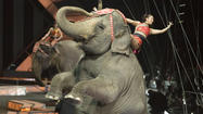 The annual elephant march into Hampton has been canceled, circus promoters said.