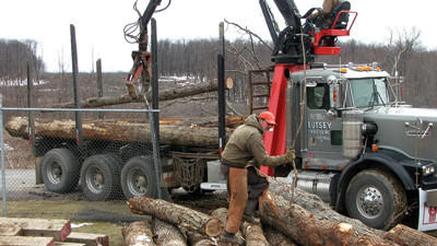 Trees that were cut for the segment of Route 219 from Meyersdale to Somerset will be used for the USS Somerset. Harold Eutsey is using a chainsaw while his son Hunter Eutsey operates the boom. Both are with Eutsey Lumber of Scottdale.