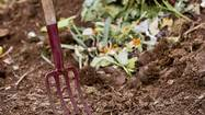 Life Skill #41: How to build a compost pile