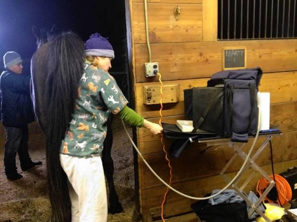 Equine veterinarian Megan Coveyou administers an ultrasound on a horse for breeding purposes at Seven Oaks Farm. The farm is seeking landmark status.