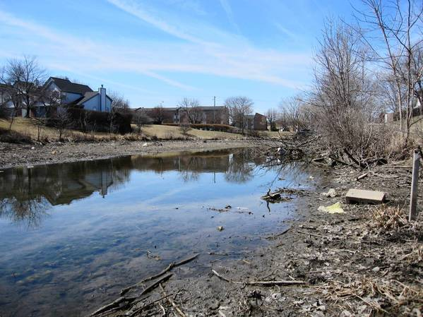 Prentiss Creek on the south side of the village has low water levels and poor water quality. Residents have also complained about the debris that has washed up on the shorelines.