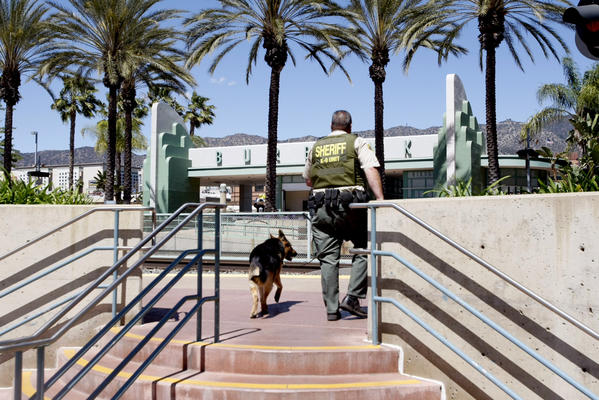 A Los Angeles County Sheriff's deputy and K-9 walk through the Burbank train station which was closed due to a report of a possible bomb on a Metrolink train.
