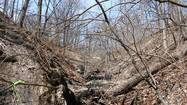 Lake Bluff is taking steps to prevent the kind of ravine erosion that is plaguing a number of North Shore communities.