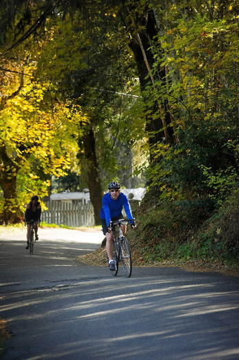 Bicyclists ride along the Franz Valley loop in Calistoga, Calif.