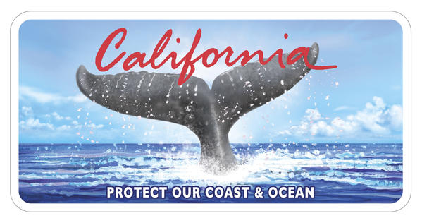 California's whale-tail license plate.