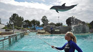 SeaWorld Entertainment Inc., the theme park chain owned by Blackstone Group, priced its shares at the top of the marketed range and raised $702 million in its initial public offering.