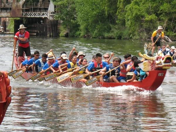 The UIC Pyro Paddlers compete in 2012.