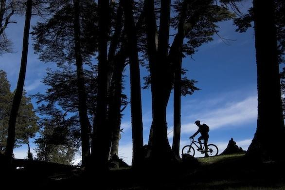 A bike adventure in Chile's Patagonia region travels through wine country and the Lake District.