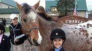The St. James Pony Club announces the certification of Grace Kucienski from Unrated to D-1 at a testing held on April 16, 2013 at St. Charles Farm in St. Charles, IL. Grace Kucienski is the daughter of Andrew and Nancy Kucienski of Winfield, IL and is trained by Kelly McCaughey.
