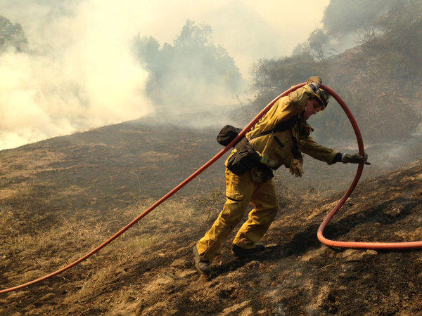 A firefighter wrangles a hose as brush burns in the hills of Monrovia on Saturday. As of 4 p.m., an official said no homes were on fire.