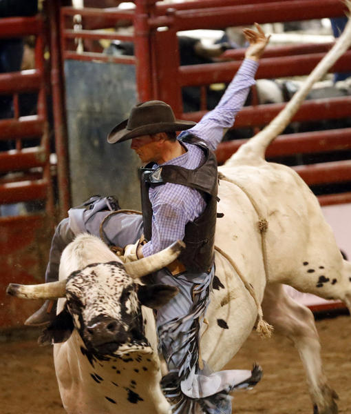 Jared Schaeffer, of Leola, looses his grip during his first ride Saturday night at the Bull Riding Classic at Holum Expo Building. Schaeffer went on to win the short go round. photo by john davis taken 4/20/2013