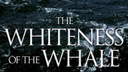 'Whiteness of the Whale' mashes up 'Moby Dick,' environmental concerns
