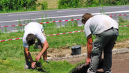 Landscape workers go for the green