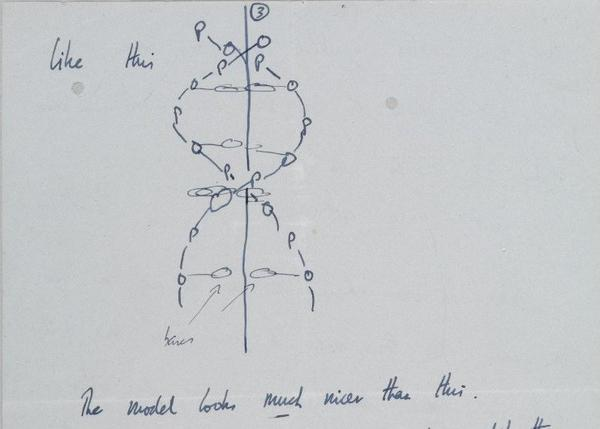 As DNA Day dawns Thursday, scholars and auction buffs are focused on the letters of co-discoverer Francis Crick. Here, a drawing of the DNA molecule from a letter the scientist wrote in 1953 to his 12-year-old son.