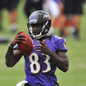 <b>Deonte Thompson, wide receiver</b>
