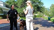 Officer Lina Strube spent Wednesday morning strolling Winter Park neighborhoods, knocking on doors, chatting with residents and urging more safety precautions in the wake of a series of brazen home burglaries.