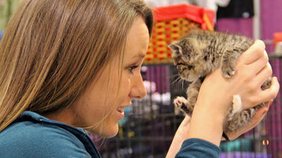 PHOTOS: Roanoke Civic Center Pet Expo 2013