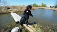More than 100 gloved volunteers, some in boots and others in waist-high waders, streamed along narrow paths and historic sea walls Saturday in a secluded nook of wetlands just south of Fort McHenry, their eyes scanning for trash or the perfect spot to plant a sapling.