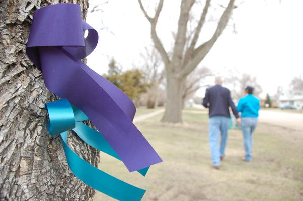 Keenan Stoecker, left, and Marion Kallas, seen in the background, stapled teal and navy ribbons to trees in Leola to protest the school board's plans to demolish the old high school building. American News Photo by Calvin Men