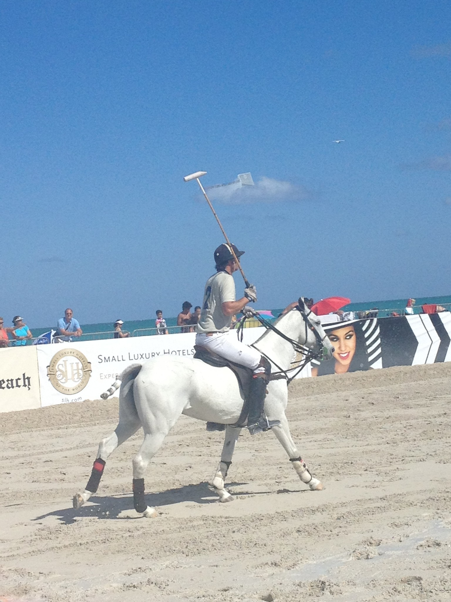 Miami Beach Polo - Horsing around