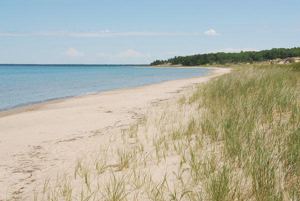 Tip of the Mitt Watershed Council's Gaps Analysis will include evaluating local governments' ordinances related to shorelines, among other water ordinances.