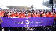The March of Dimes has raised $328,000 to date thanks in part to over 4,000 residents who participated in a fundraiser Sunday morning at Rentschler field.