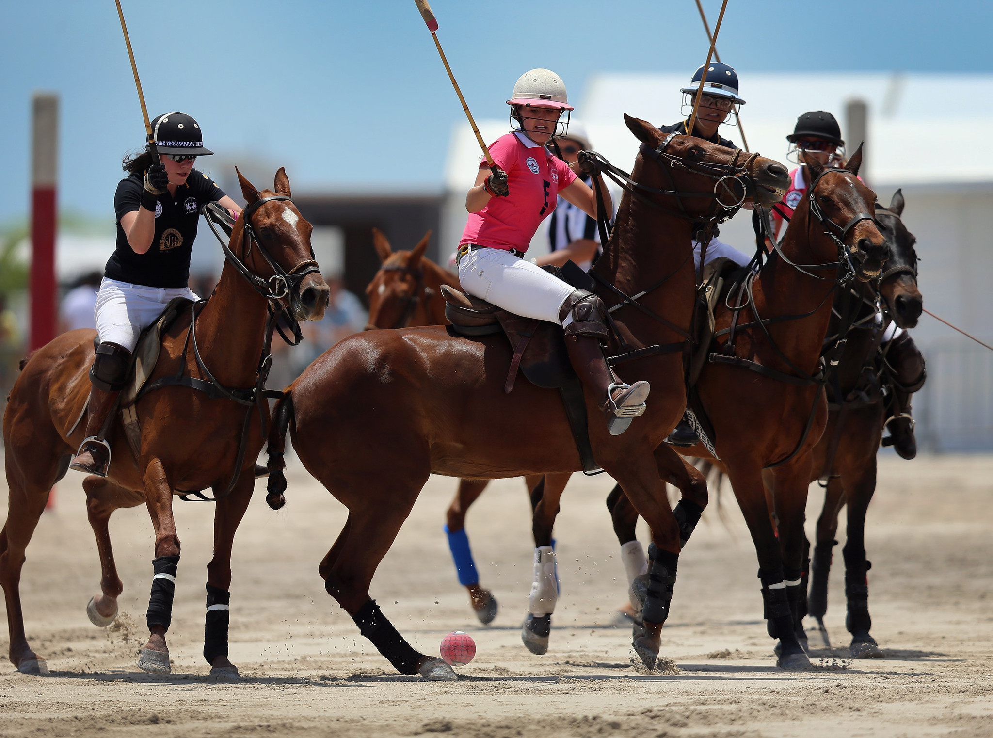 Miami Beach Polo - Women