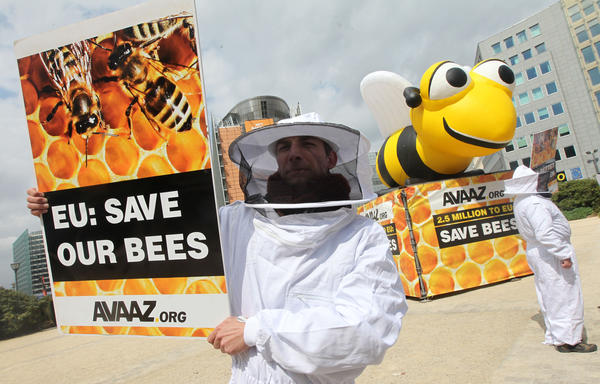 Beekeepers demonstrate in front of the European Council and Commission in Brussels.