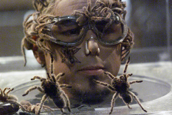 """""""Fear Factor"""" producer Endemol has entered the Israeli reality market by purchasing production company Kuperman. Here, a """"Fear Factor"""" contestant is in the Tarantula Jar."""
