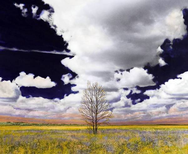 """Solitude"" is an example of Ellie Diez-Massaro's handpainted landscape photos that will be exhibited at Lake Eustis Museum of Art."