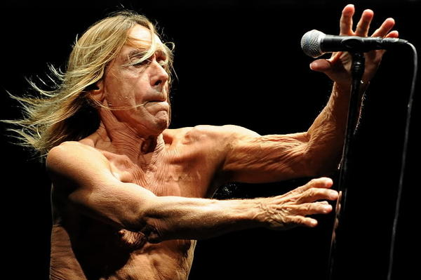 Iggy Pop performs on stage with his band Iggy and the Stooges at Bluesfest Byron Bay 2013 in March.