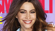 Sofia Vergara doesn't seem to want another big wedding when she and fiance Nick Loeb tie the knot.