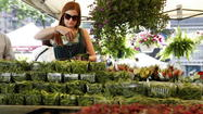 Get ready to head over to two new Chicago farmers markets set to open soon with night hours.