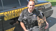 K-9 Veit with the Jefferson County Sheriff's Office is the latest area law enforcement canine officer to be awarded a bulletproof vest thanks to a nationwide animal-related charity event held last month, according to a police department news release.