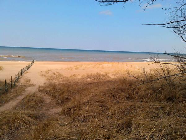 """Soon to be officially known as the Elmwood Dunes Preserve, this property used to be a public beach open to recreational use prior to 1933. It's now open for """"passive use"""" enjoyment."""