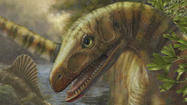 Did dinosaur ancestors benefit from worst extinction on Earth?
