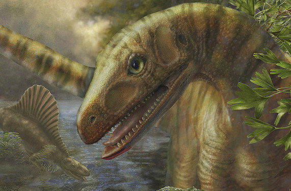 "After the ""Great Dying"" mass extinction at the end of the Permian period, some animals, like Asilisaurus, depicted here, had more restricted ranges, according to research published this week."