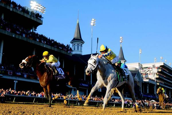 Up to 20 thoroughbreds race in Saturday's Kentucky Derby.