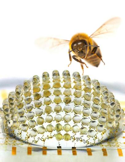 http://www.trbimg.com/img-5181889d/turbine/la-sci-sn-bug-eye-camera-fly-lens-20130501-001/525