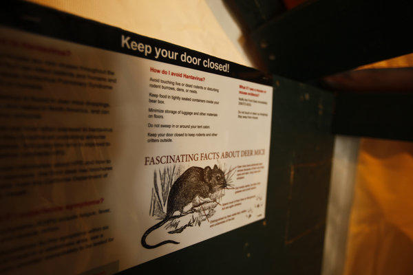 Educational placards about deer mice are mounted in the new tent cabins at Curry Village in Yosemite National Park.
