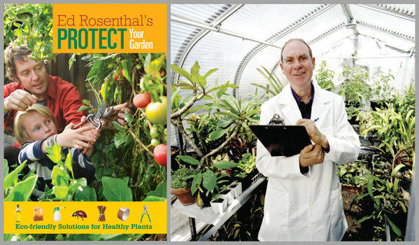 'Ed Rosenthal's Protect Your Plants'