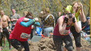 Tough Mudder's event team is expected to meet with Berkeley County officials this month to discuss plans and resources for endurance series' fall event near Martinsburg, which is slated for the same October weekend as the Mountain State Apple Harvest Festival.