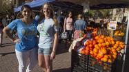 Farmers Markets: Bruins like to feed on fresh fruit and vegetables