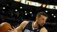 Hedo Turkoglu: 2012-13 Orlando Magic player evaluations